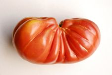 Free Tomato Royalty Free Stock Images - 8097729