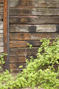 Free Wooden Wall Stock Images - 818704