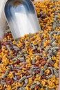 Free Macaroni Madness Royalty Free Stock Photo - 819895