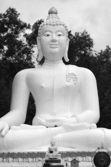 Free Giant Buddha Royalty Free Stock Image - 812826