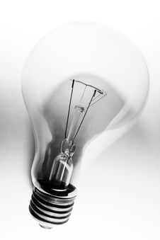 Free Bulb Royalty Free Stock Photo - 813045