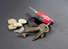 Free Keys And Coins Royalty Free Stock Photography - 813617