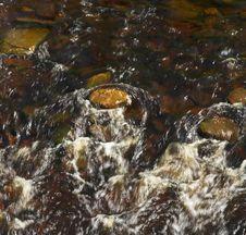 Free River Detail Royalty Free Stock Image - 815946