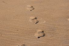 Free Footstep Stock Photo - 819100