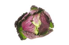Free Red And Green Cabbage Stock Photos - 8100723