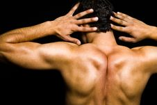 Back Of Muscular Athletic Man Stock Photography