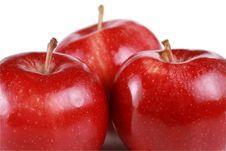 Free Three Shiny Red Apples Royalty Free Stock Photography - 8103077
