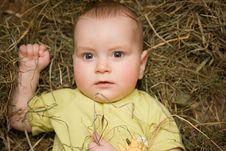 Free Baby Stock Photo - 8104420