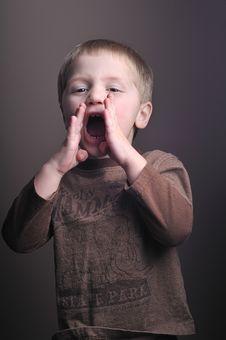 Free Portraits Of Little Boy Stock Image - 8105041
