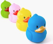 Free Ducks Stock Images - 8105354