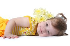 Free Yellow Flowers Royalty Free Stock Photography - 8106987