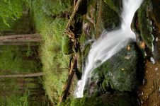 Free Waterfall In Bohemia Stock Images - 8108494