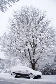 Free Car And Tree In Snow Royalty Free Stock Photography - 8108767