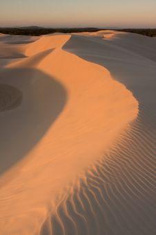Free Desert Landscape Stock Image - 8109481