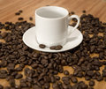 Free Espresso Coffee Beans With Cup And Saucer Royalty Free Stock Photos - 8114458