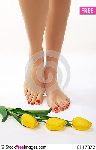 Free Pedicured Feet And Yellow Tulips Stock Photography - 8117372