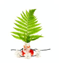 Green Leaf In China Fish Stock Images