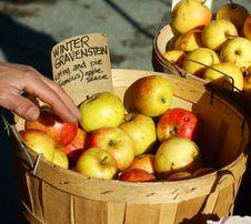 Free Organic Apples Stock Photos - 8112263