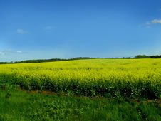 Free Beautiful Blue Sky Landscape Stock Images - 8112724