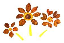 Free Three Ornamental Flowers Stock Image - 8112771