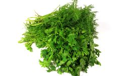Free Dill And Parsley Royalty Free Stock Images - 8113249