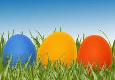 Free Easter Eggs In Spring Grass Stock Photography - 8114772