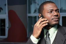Free Businessman On The Phone Royalty Free Stock Images - 8117949