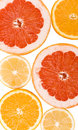 Free Lemon, Orange And Grapefruit Stock Images - 8128444