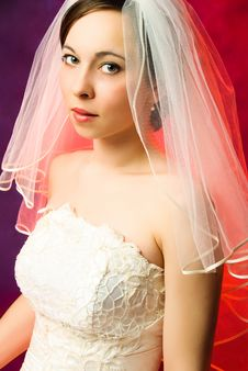 Free Young Brunette Bride Royalty Free Stock Image - 8120436