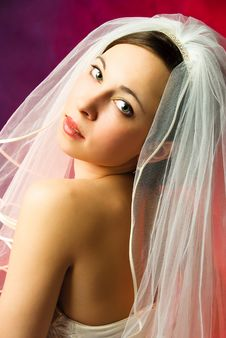 Free Young Bride Royalty Free Stock Photography - 8120467