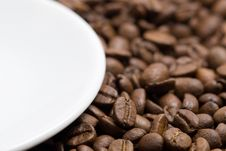 Free Coffee Beans Stock Image - 8120691