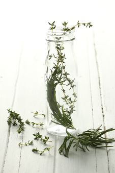 Free Thyme In A Bottle And Rosemary Too!. Stock Images - 8121444