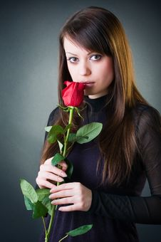 Free Sensual Girl With Rose Royalty Free Stock Photography - 8122907