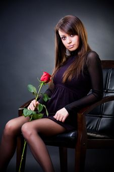 Free Attractive Girl With Rose Stock Photography - 8122912