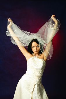 Free Sexy Brunette Bride Holding Her Veil Stock Photo - 8125870