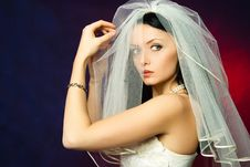 Free Sexy Brunette Bride Stock Images - 8125974