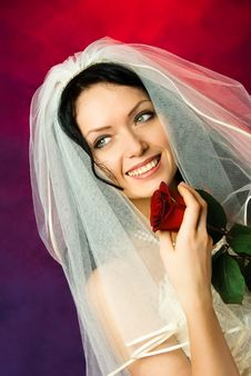 Free Beautiful Brunette Bride With A Red Rose Royalty Free Stock Image - 8126306