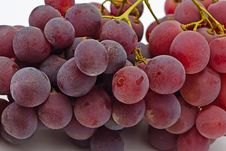 Free Cluster Grapes Stock Photos - 8126783