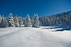 Free Snow In Alps Stock Photography - 8126862