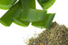 Aloe Vera - Alternative Therapy