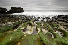 Free Mossy Rocks On A California Beach Royalty Free Stock Images - 8128879