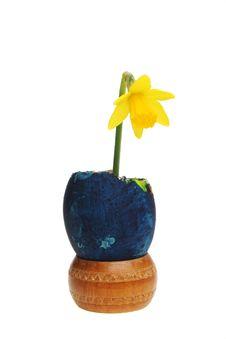 Free Egg And Daffodil Stock Photo - 8129000