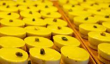 Pistachio Tarts Stock Image
