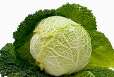 Free Cabbage Stock Photo - 8129840
