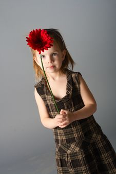 Free Girl With Red Flower Stock Image - 8129851