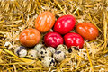 Free Easter Eggs In The Straw Nest Stock Photography - 8130942