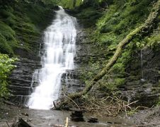 Free Waterfall In Wales Forest Stock Photo - 8130590