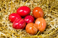 Free Easter Eggs In The Straw Nest Stock Image - 8130951