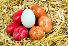 Free Easter Eggs In The Straw Nest Stock Images - 8130954