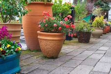 Free Garden Royalty Free Stock Photo - 8132155